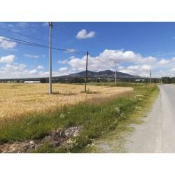 Terreno en venta sobre la carretera Pachuca - Sahágun, Hidalgo